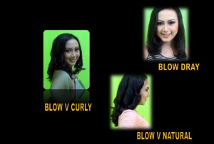 HBC - BLOW DRAY - CURLY - NATURAL